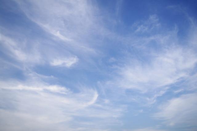 夏季休業のお知らせ(8/13、一部訂正)
