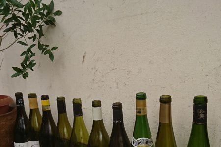 美味しいワインを沢山仕入れしました